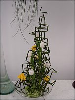 www.floristic.ru - Флористика. Использование хвоща