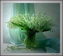 www.floristic.ru - Флористика. Уход за срезкой
