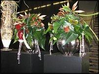 "www.floristic.ru - Флористика. Клаус Вагенер,Араик Галстян.Мастер-класс ""Рождество.Новый Год"" 28.10.2009"