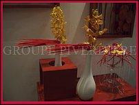 "www.floristic.ru - Флористика. Французская флористическая школа ""Piverdie"""