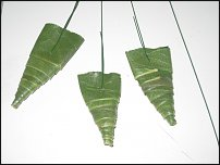 www.floristic.ru - Флористика. виды трансформации листьев и их использование