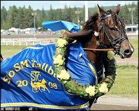 www.floristic.ru - Флористика. Венок для лошади