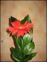 www.floristic.ru - Флористика. Упаковка одного цветка