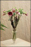 www.floristic.ru - Флористика. 7 цветов Олаф Шрерс Рождество