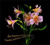 www.floristic.ru - Флористика. Татьянин день!