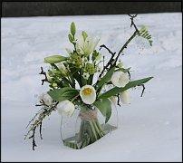 www.floristic.ru - Флористика. Разбор полётов