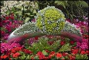 www.floristic.ru - Флористика. выставка цветов, садов и ландшафтного дизайна Chelsea Flower Show