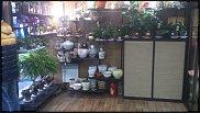 www.floristic.ru - Флористика. продажа бизнеса