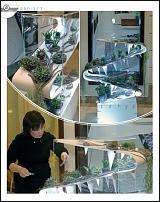 www.floristic.ru - Флористика. Первые мастера флористы России наши студенты