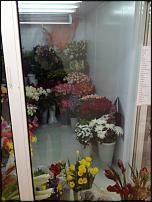 www.floristic.ru - Флористика. Продам холодильную камеру!!!