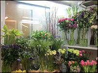 www.floristic.ru - Флористика. Зарплата флориста