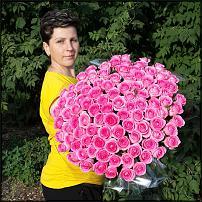 www.floristic.ru - Флористика. 101 роза 60 или 70 см?