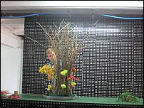 www.floristic.ru - Флористика. Золотое сечение