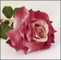 www.floristic.ru - Флористика. Цветы ручной работы для интерьера