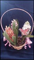 www.floristic.ru - Флористика. Продам корзины с гиацинтами