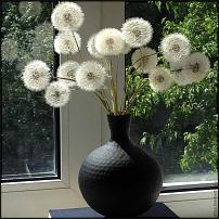 www.floristic.ru - Флористика. Работы с одуванчиками