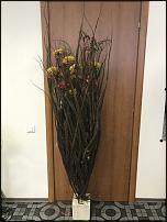 "www.floristic.ru - Флористика. жизнь в ""НИКОЛЬ"""