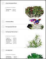 www.floristic.ru - Флористика. Сервис сравнения оптовых цен на цветы