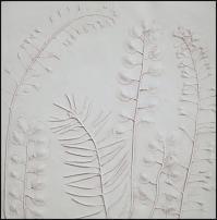 www.floristic.ru - Флористика. Создание гипсовых отпечатков растений
