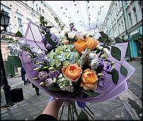 www.floristic.ru - Флористика. Ищу подработку в качестве приходящего флориста