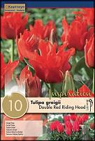 www.floristic.ru - Флористика. Продаем луковицы весенних цветов
