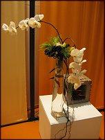 """www.floristic.ru - Флористика. Показ мастеров школы """"Николь"""" на выставке IPM 2011 в Германии"""