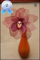 www.floristic.ru - Флористика. Победители и участники