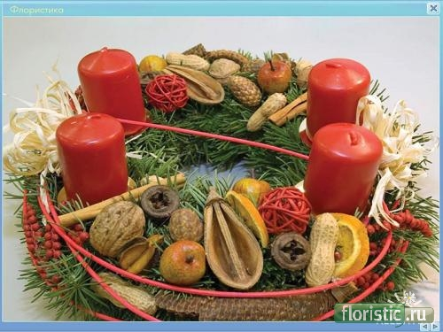 http://www.floristic.ru/forum/attachment.php?attachmentid=16294&d=1253789414