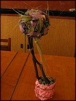 www.floristic.ru - ����������. ����� - ���