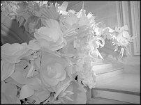 www.floristic.ru - Флористика. ВИТРИНИСТИКА. Применение флористики в дизайне магазинов ПРОМТОВАРОВ.