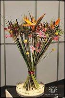 www.floristic.ru - Флористика. Выставка цветов и растений IPM Essen, Germany