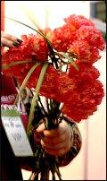 "www.floristic.ru - Флористика. Мастер-класс Елены Бутко ""Мужские букеты"" Киев.02.02.2010"