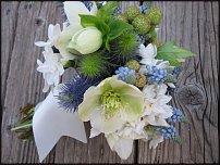 www.floristic.ru - Флористика. Muscari - Мускари
