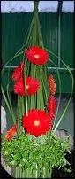 www.floristic.ru - Флористика. Шоу-показ Роберта Коене в Киеве 22.01.2010