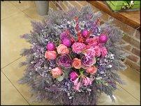 www.floristic.ru - Флористика. Владимир и Александр Бермяковы