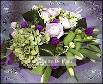 www.floristic.ru - Флористика. Нарцисс-Narcissus