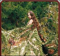 www.floristic.ru - Флористика. Land Art