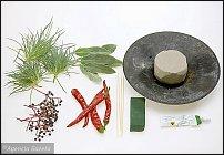 www.floristic.ru - Флористика. Step-by-step