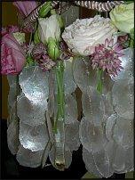 www.floristic.ru - Флористика. Вячеслав Рошка