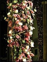 www.floristic.ru - Флористика. Landcommanderij Alden Biesen
