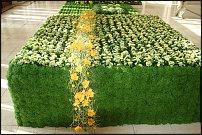 www.floristic.ru - Флористика. Фитодизайн помещений