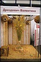 """www.floristic.ru - Флористика. """"Амарантовый сезон"""" в Киеве"""