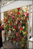 www.floristic.ru - Флористика. FLOWERS & HORTECH UKRAINE