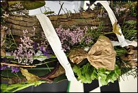 www.floristic.ru - Флористика. Euroflora 2011, Italy
