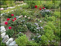www.floristic.ru - Флористика. Если Вы садовод...