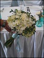 www.floristic.ru - Флористика. Scabiosa( скабиоза)