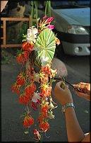 www.floristic.ru - Флористика. Обучение флористике в Киеве
