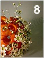 www.floristic.ru - Флористика. Октябрь- голосование