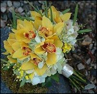 www.floristic.ru - Флористика. Цикламен
