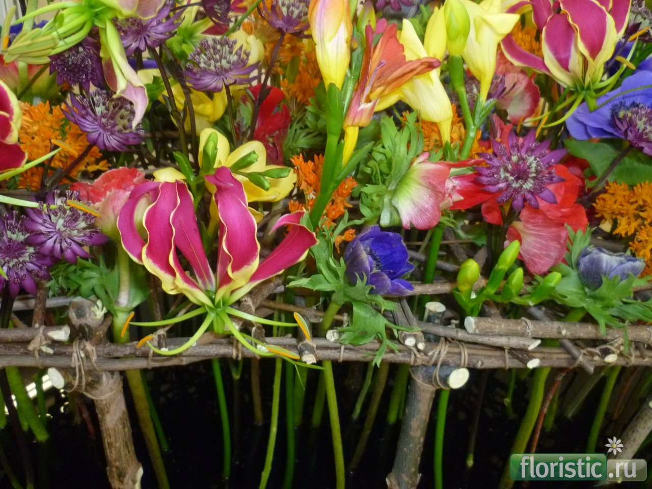Цветы поволжья